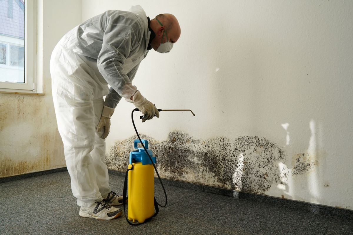 9 Sneaky Signs There Might Be Mold In Your House